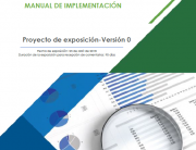 Manual auditoría financiera